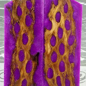 Vivid Purple Cholla P1
