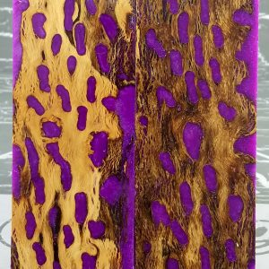 Vivid Purple Cholla P2